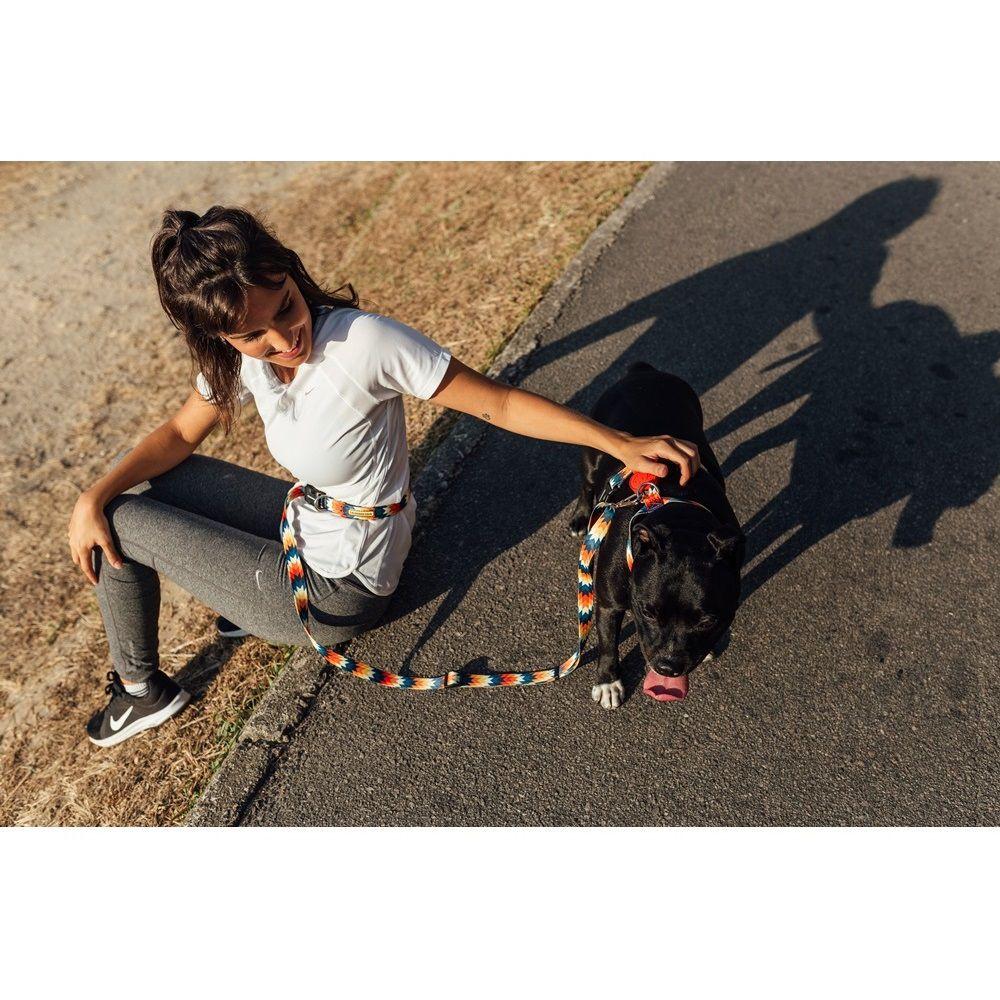 Guia Running para Cachorro Cachorreiros Inti - Frete Grátis Sul e Sudeste