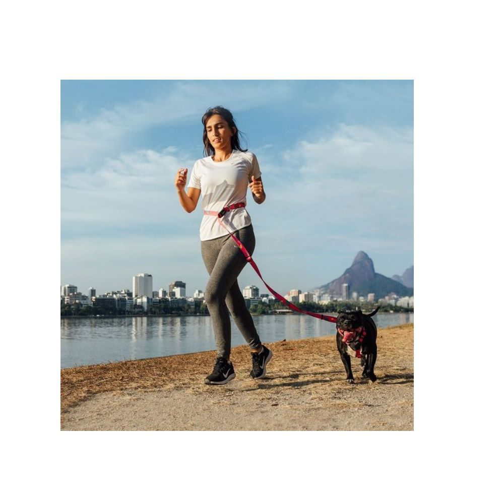 Guia Running para Cachorro Cachorreiros Olívia