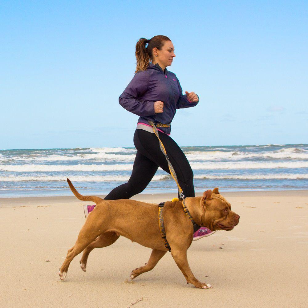 Guia Running para Cachorro Cachorreiros Outdoor