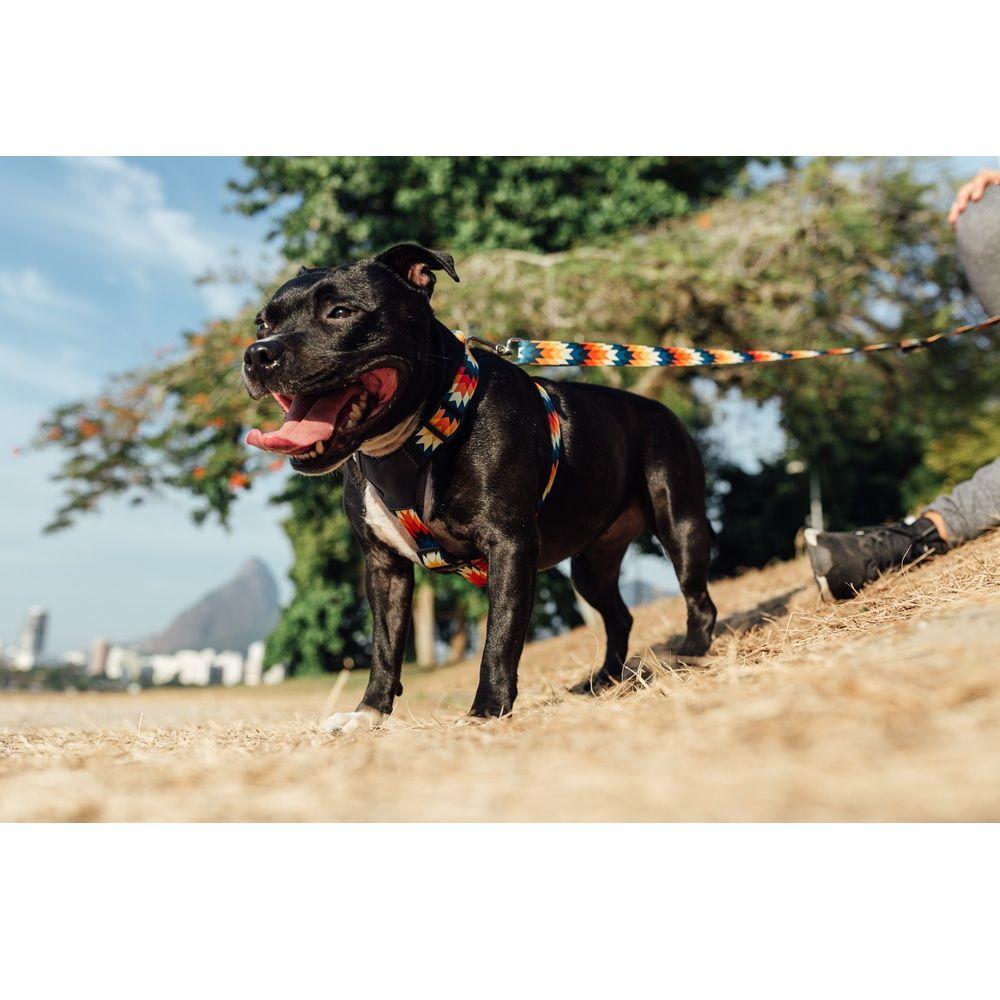 Peitoral H para Cachorro Cachorreiros Inti - Frete Grátis Sul e Sudeste