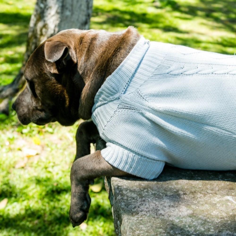 Suéter Roupinha para Cachorro - Cinza