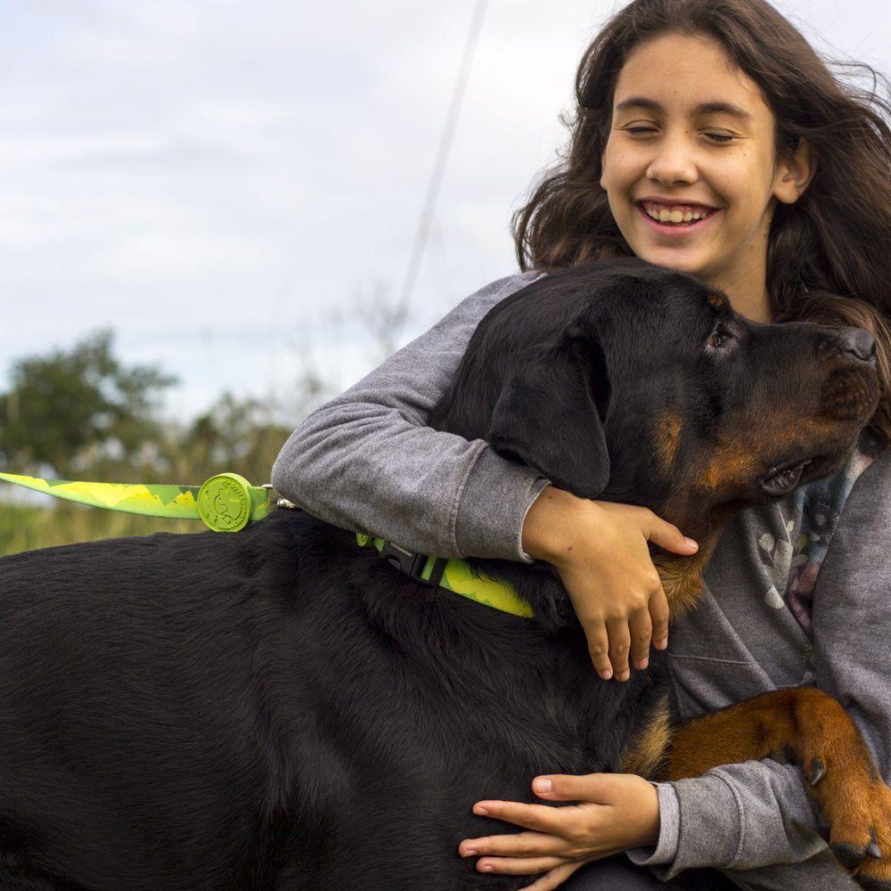 Super Guia para Cachorro Cachorreiros Adventure - Frete Grátis Sul e Sudeste