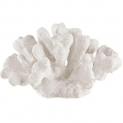 Escultura Decorativa Coral Branco em Poliresina 11cm 13426 Mart