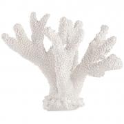 Escultura Decorativa Coral Branco em Poliresina 21cm 13427 Mart