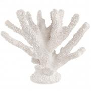 Escultura Decorativa Coral Branco em Poliresina 29cm 13428 Mart