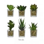 Kit Flor Suculenta Verde Sortida C/ Vaso Vidro Artificial Permanente 6 Unidades 10CM 28476-001