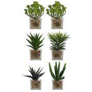 Kit Flor Suculenta Verde Sortida C/ Vaso Vidro Artificial Permanente 6 Unidades 20CM 28109-001