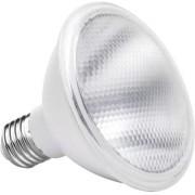 Lâmpada PAR 30 10W 6500K IP54 Uso Externo Bivolt Save Energy