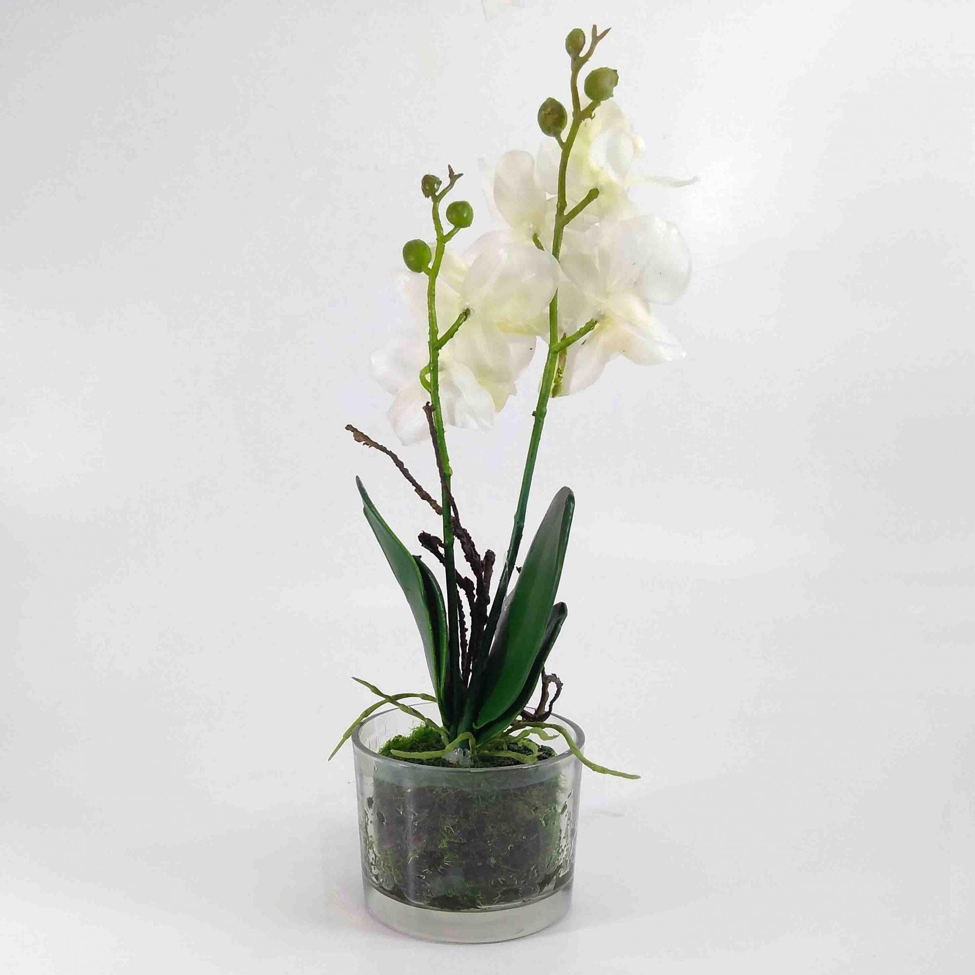 Flor Orquidea Phalaenopsis X5 Cor Branca C/ Vaso Artificial Permanente 25CM 36679-002