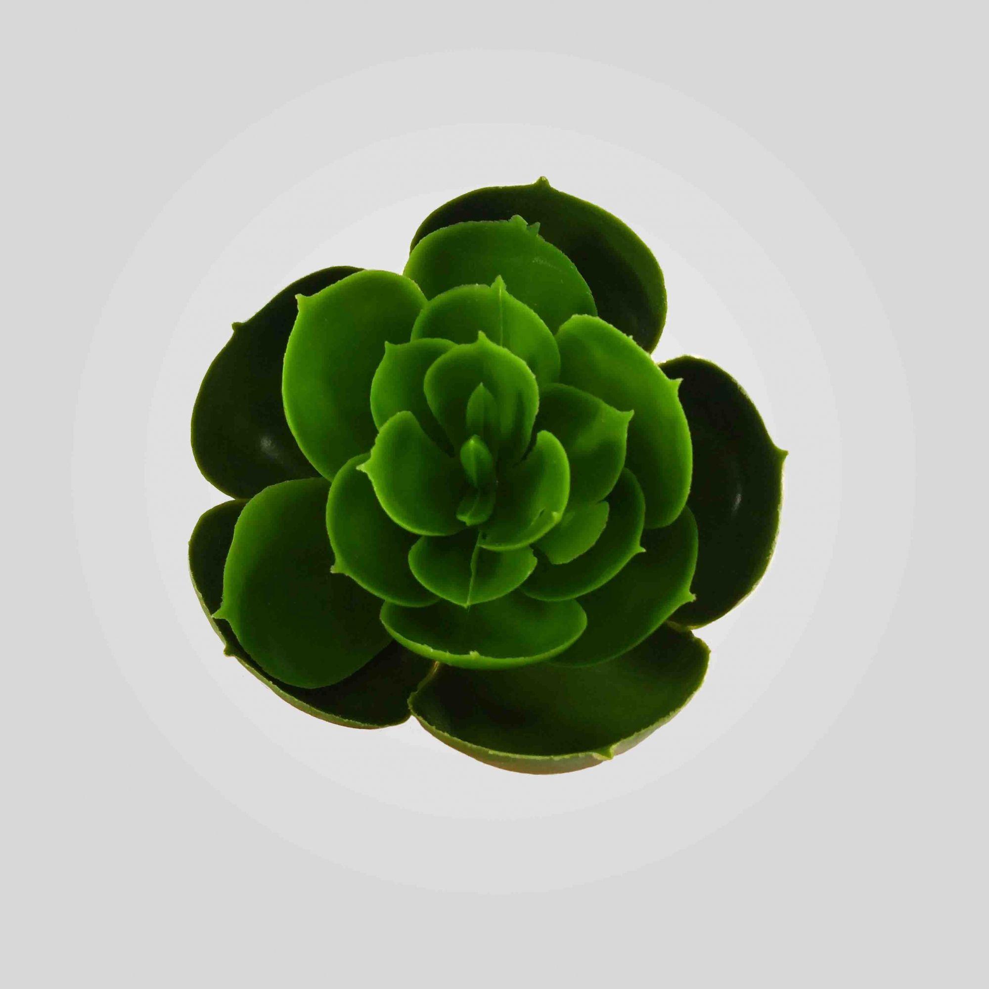 Flor Suculenta Cor Verde Artificial Permanente 5CM 36426-001