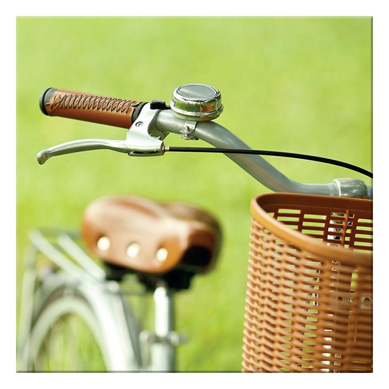 Quadro Decorativo Bike And Basquet 40X40CM BTC