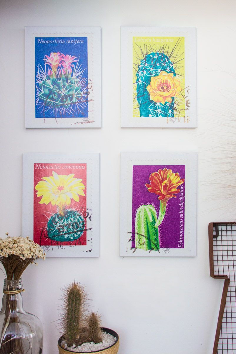 Combo 4 Quadros Decor Selo Cactus