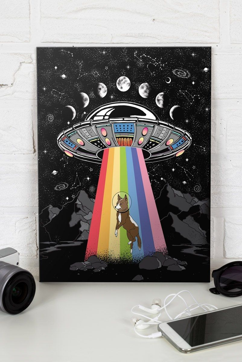 Quadro Decor NAVE Space Dog