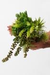 Arranjo Planta Artificial Decor Permanente