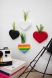 Mini Vaso De Parede Decor - Coração