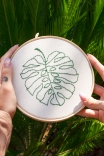 Quadrinho Bordado Decor Plantae Costela De Adao