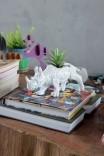 Vaso Decor Rinoceronte