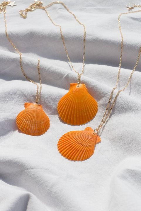 Colar Pingente Concha Coral
