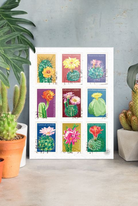 Quadro Decor Selo Cactus