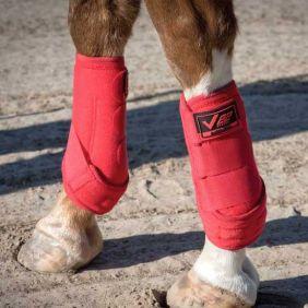 Caneleira Partrade Ventex 22 para Cavalo Diversas Cores