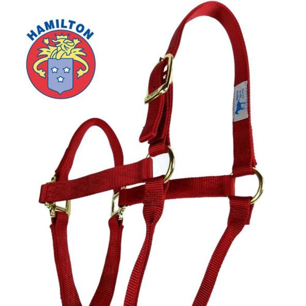 Cabresto de Cavalo Importado Hamilton Médio Vermelho 1Q AVRD