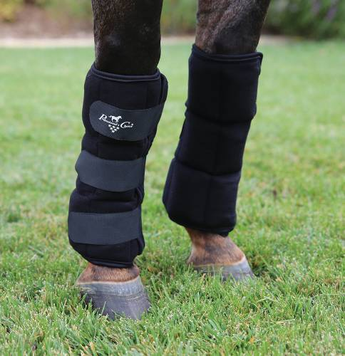 Ice Boots  para Cavalo Professional
