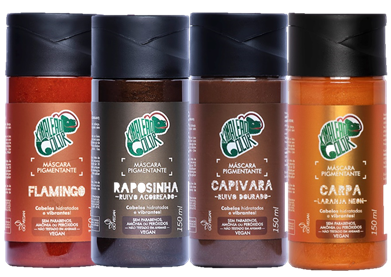 Kit Kamaleão Color - Flamingo, Raposinha, Capivara e Carpa
