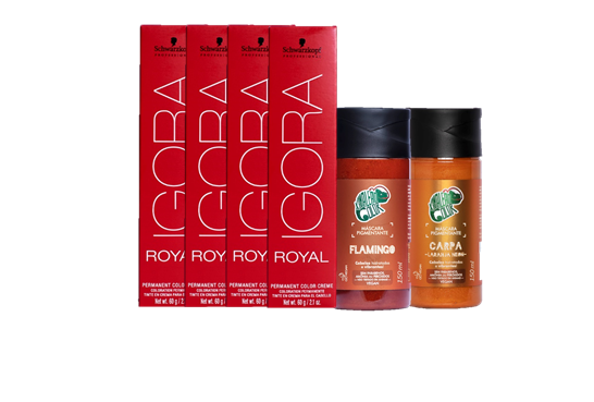Kit Igora Royal 9.7, Kamaleão Flamingo e Kamaleão Carpa