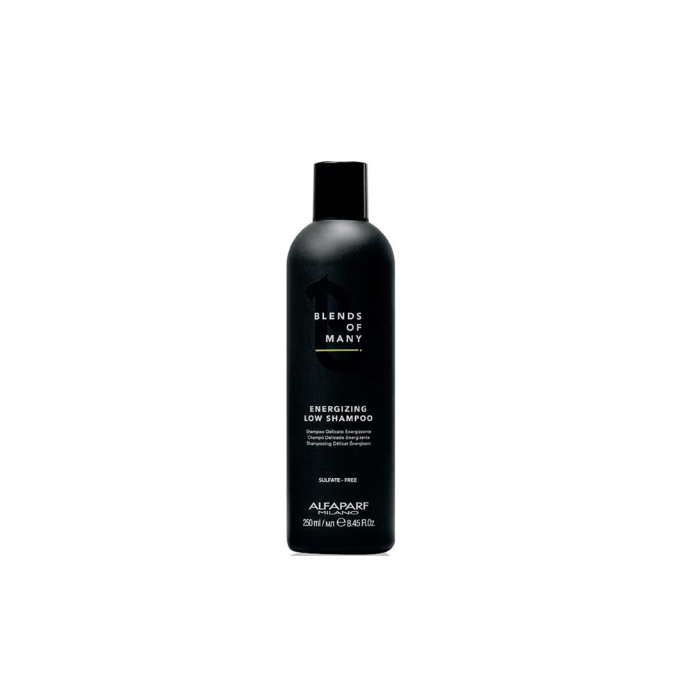 Shampoo Blends Of Many - Energizing Alfaparf Milano