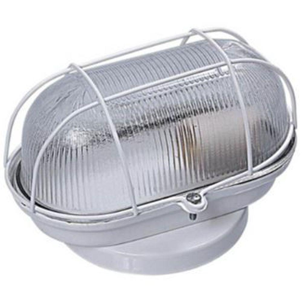 Kit 6 Luminária Tartaruga