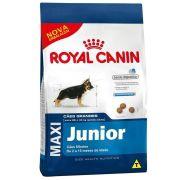 Ração Royal Canin Shn Maxi Junior para Cães Filhotes de Raças Grandes Com 2 A 15 Meses