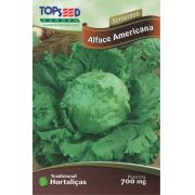 Semente Alface Americana Topseed H108 -10 Pacotes