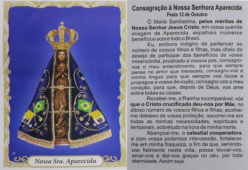 Escapulário N Sª Aparecida Colorida 60cm Aço Inox  - Lunozê Joias