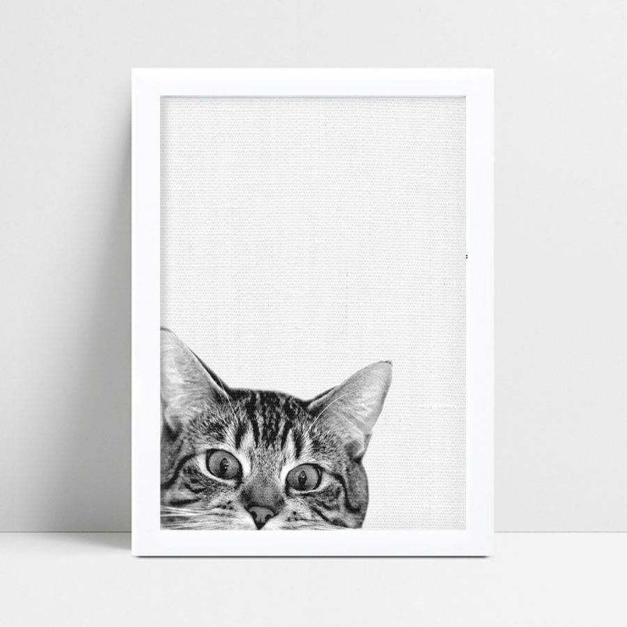 Placa MDF grande poster menino menina foto gato