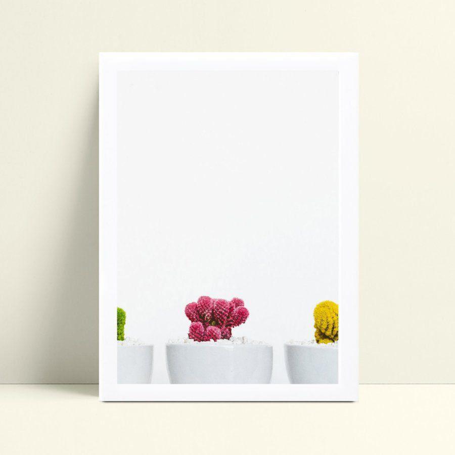 Quadro quadro decoração plantas cactos suculentas