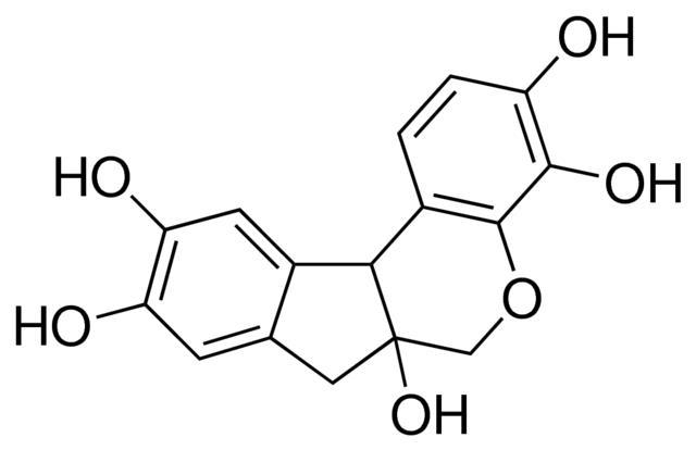 HEMATOXILINA (CI.75290) 25G NEON