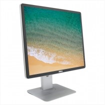 "Monitor Dell P1914Sf 19"" - Usado"
