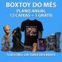 Boxtoy Anual - Receba todo mês um tema geek diferente