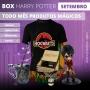 Boxtoy Harry Potter - Todo mês produtos diferentes!