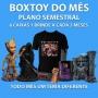 Boxtoy  Semestral - Todo mês um tema geek diferente