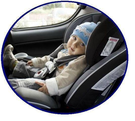 Capa Protetora Banco de Carro para Animais Multilaser AU307