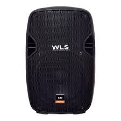 "Caixa Acústica 10"" 100 Watts 8 Ohms S-10 PASSIVA - WLS"