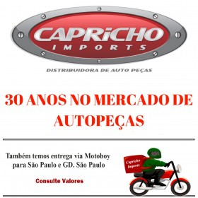 Gancho Tampa Painel Ford F350 2000/2005  -  25044F46