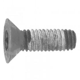 Parafuso da cabeça do escarea bosch - 2423421005