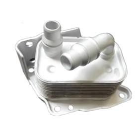 Resfriador Radiador De Óleo BMW R6D4D