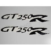 Emblema Adesivo Resinado Kasinski Gt 250r Par Rs19