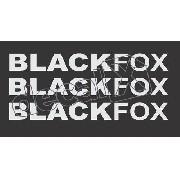 Kit Adesivo Emblema Volkswagen Fox Blackfox 2010 Bf001