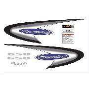 Kit Adesivos Suzuki Freewind 650 2002 Prata Fwd017