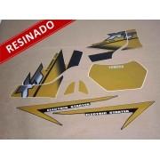 Kit Adesivos Xt225 2002 Dourada Resinado