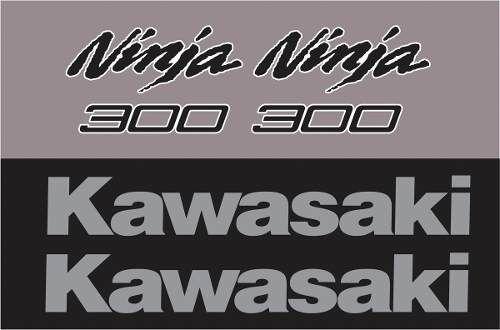 Kit Adesivo Kawasaki Ninja 300 Cinza Nj004